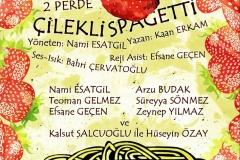 2014-2015 Tiyatroname - Çilekli Spagetti- Oyuncu
